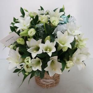 flower-gift-korea-eternal-glory-lily-flower-product-main-1