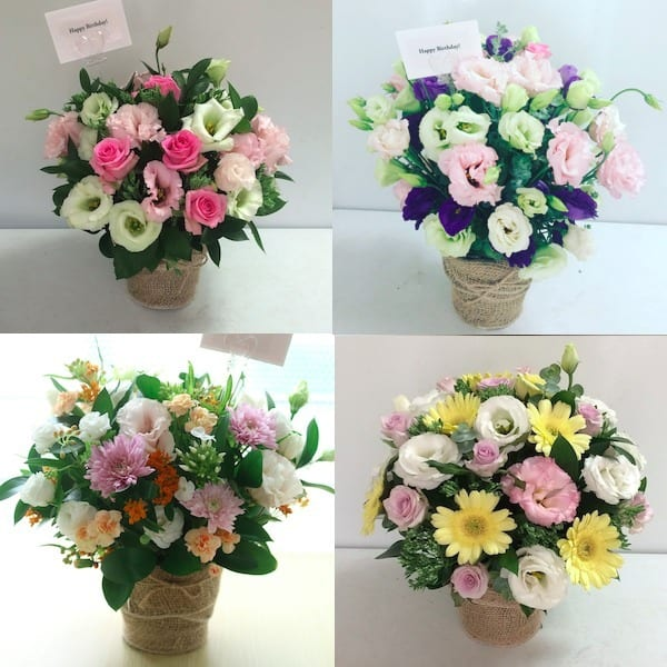flower-gift-korea-flower-of-the-day-medium-delivery-update
