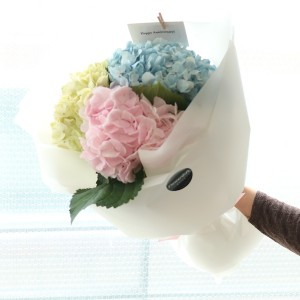 Flower Gift Korea mixed hydrangea bouquet
