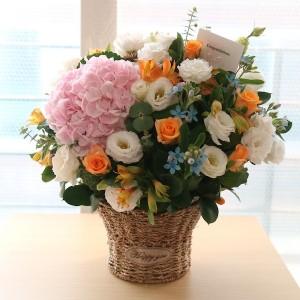 Flower Gift Korea Natural Charm Main Update