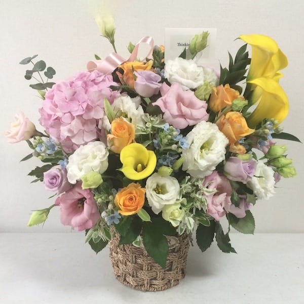 pastel beauty  flower gift korea    star reviews, same day, Beautiful flower