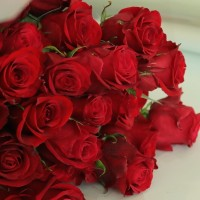High Quality Roses in Korea Flower Delivery