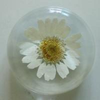 Flower GIft Korea Flower Art Magnet White