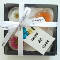 Real Flower Art Magnet Gift Set Korea