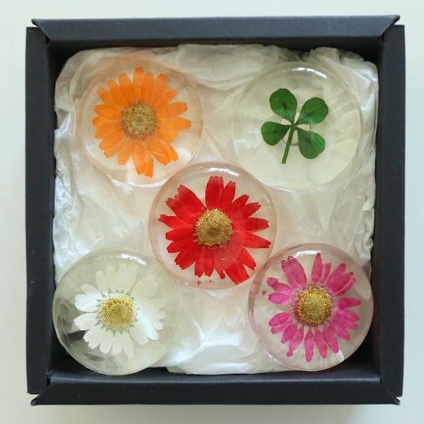 Real Flower Magnet Gift Set Seoul