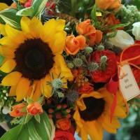 Flower Shop Gift Korea Sunflower