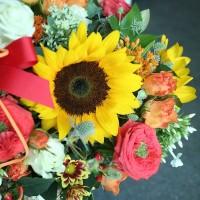 Flower Shop Seoul South Korea Sunflower