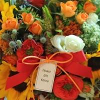 Seoul South Korea Sunflower Fire Basket