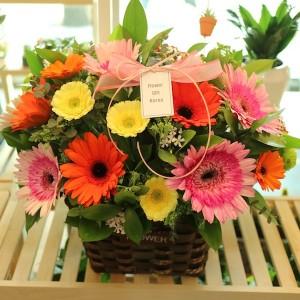 Korea Flower Basket Gift for Delivery