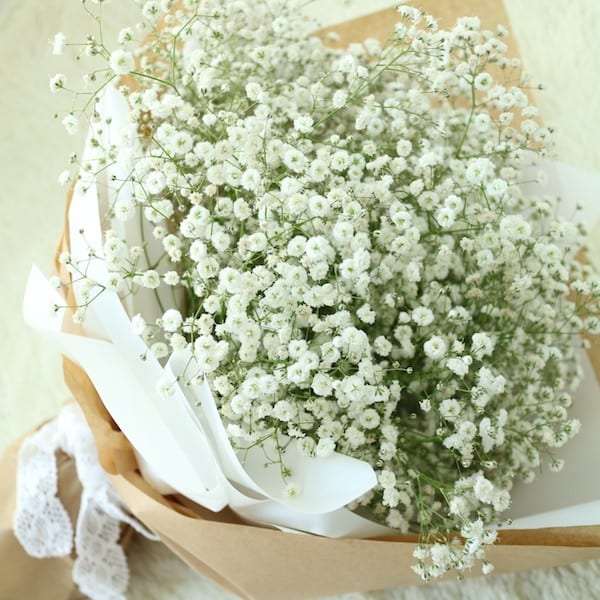 Large Baby\'s Breath Bouquet - Flower Gift Korea - 350+ 5 Star ...