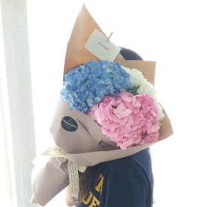Flower Gift Korea Hydrangea Bouquet