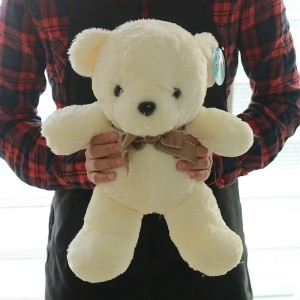 Flower Gift Korea Teddy Bear