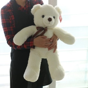 Teddy Bear Seoul