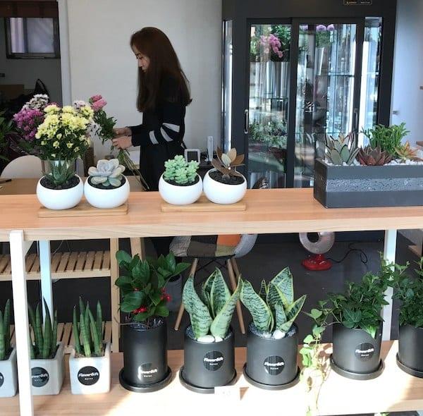 flower shop Seoul