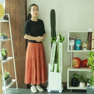 Large Cactus for Office and Home Gift Delivery in Seoul