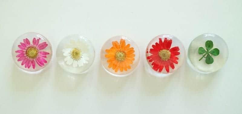 Flower Gift Korea Magnet Gift Set