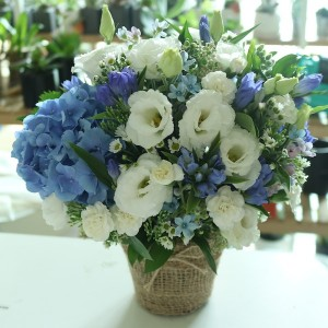 Flower GIft Korea Blue Snow Basket Main
