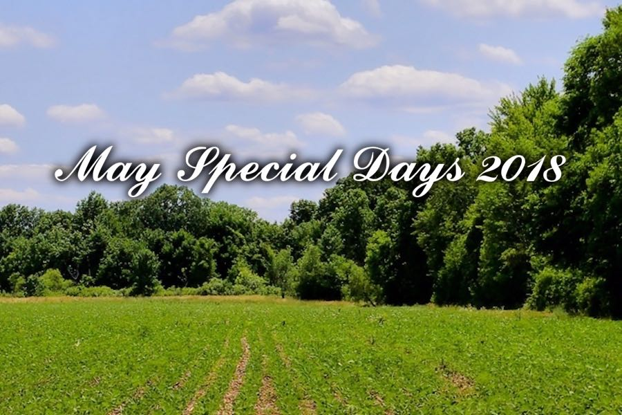 May Special Days in Seoul South Korea